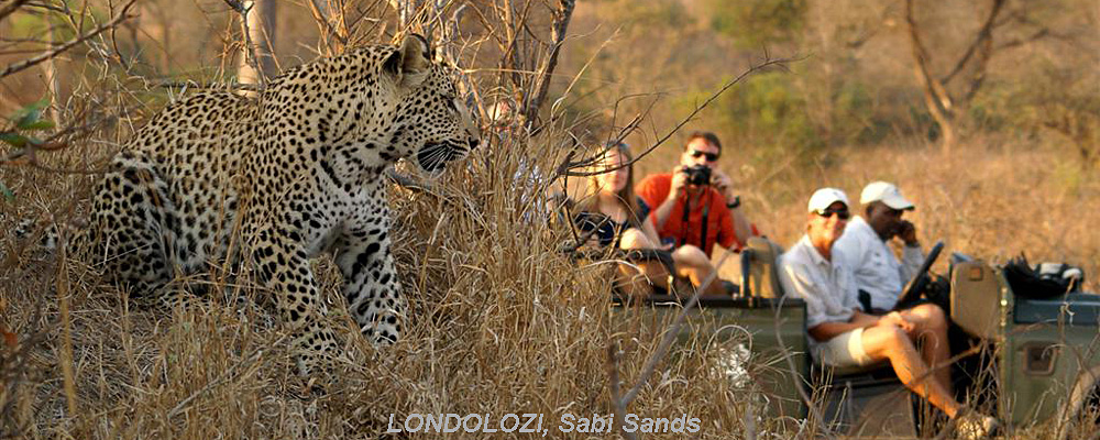 Sabi Sands Safari Deals, South Africa