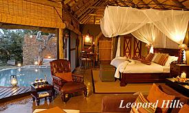 leopardhills1
