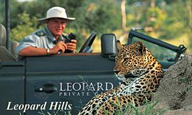 leopardhills4
