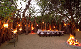 Dulini Safari Lodge, Bomma
