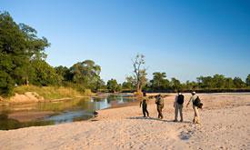 nsolo-bush-camp2