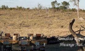 125ABC-Somalisa-camp-Hwange-Zimbabwe-3