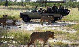 125ABC-Somalisa-camp-hwange-zimbabwe-4