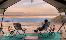 125ABC-zimbabwe-expedition-mana-pools-2