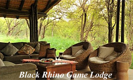 black-rhino-game-lodge7